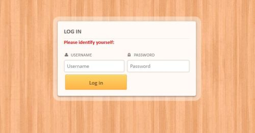 Custom Login Form 2