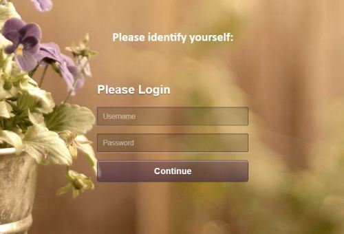 Custom Login Form 4